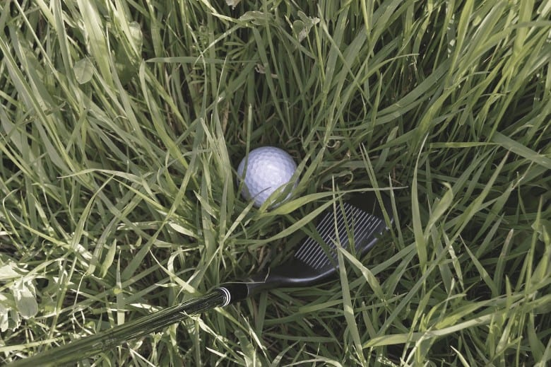 a picture that describe one of the best wedges for high handicappers